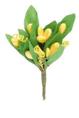 Magnolia Gialla